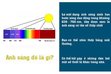 Ánh sáng đỏ là gì - Có công dụng và tác hại gì đối với làn da?