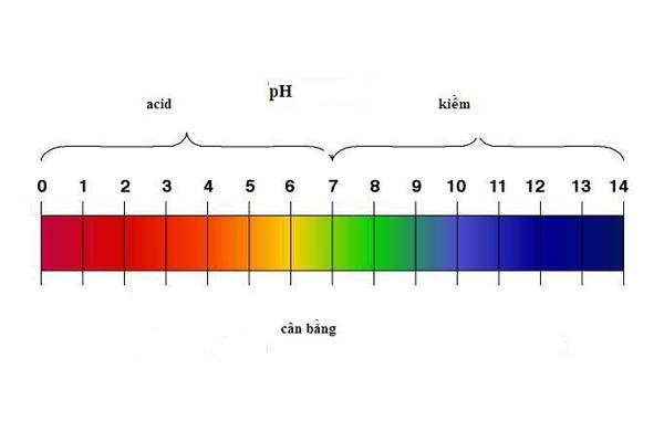 Chỉ số pH là gì? Có ý nghĩa ra sao?
