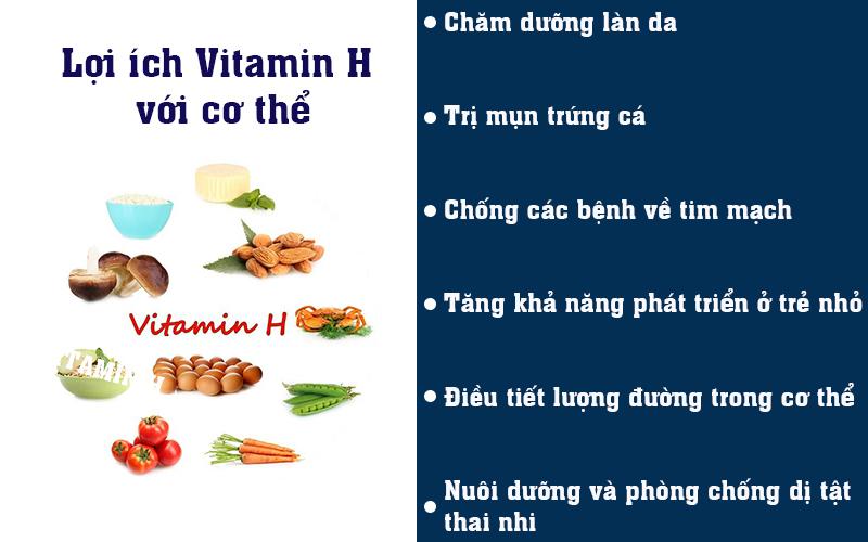 Lợi ích Vitamin H với cơ thể